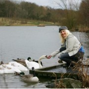 Woman's Own 2014 photo shoot – feeding Sammie the Swan