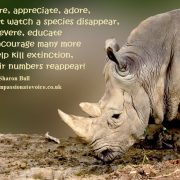 Kill Extinction