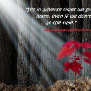 Adverse Times
