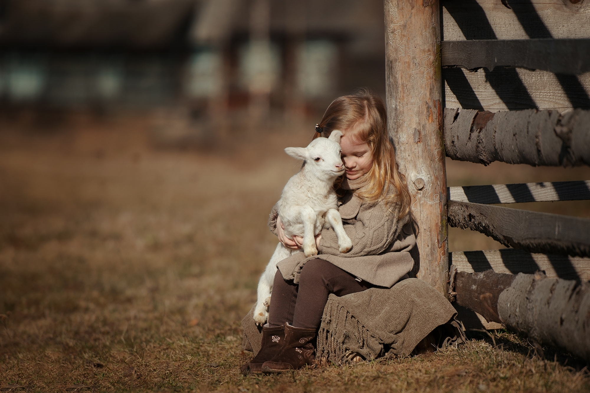 little girl with lamb on the farm